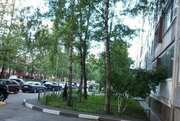 Власти Санкт-Петербурга заплатят 4 миллиарда рублей за ремонт городских дорог